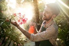 Ung stilig trädgårdsmästare som ler, bevattna som tar omsorg av blommor Signalljussolljus på bakgrund Royaltyfri Fotografi