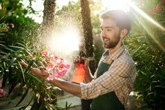 Ung stilig trädgårdsmästare som ler, bevattna som tar omsorg av blommor Signalljussolljus på bakgrund Royaltyfria Bilder