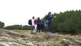 Ung studentkvinna på bergtur med hennes vänner som använder smartphonen i natur som kontrollerar för ingen nätverkssignal - arkivfilmer