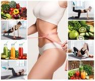 Ung sund kvinna med grönsaker collage royaltyfri fotografi