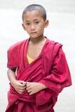 Ung tibetan buddistisk munk, Dharamsala, Indien Arkivfoton