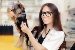 Ung veterinär Female Doctor med den gulliga hunden royaltyfria bilder