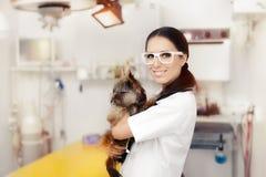 Ung veterinär Female Doctor med den gulliga hunden royaltyfri bild