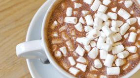 Close up of cocoa cup. Ung woman drink cocoa with marshmallows and read book stock video