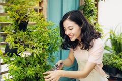 Ung yrkesmässig kvinna i nagelsax för buske för förklädesnittgräsplan i Royaltyfria Bilder