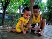 Unga asiatiska pojkar som spelar under ett träd Arkivfoto
