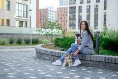 Unga attraktiva kvinnor som sitter med den skrovliga valpen för hund två på gatan royaltyfria bilder