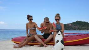 Unga bekymmerslösa vänner med en hund som äter Watemelon på stranden koh phangan thailand arkivfilmer