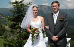 Unga brölloppar Royaltyfri Bild