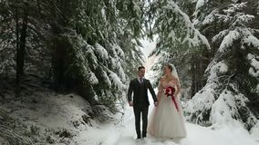 Unga brölloppar som går, ler och talar rymma händer i snöig skog under snöfall brudbrudgum som gifta sig utomhus vinter stock video