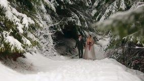 Unga brölloppar som går, ler och talar rymma händer i snöig skog under snöfall brudbrudgum som gifta sig utomhus vinter lager videofilmer