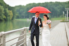 Unga brölloppar som går på deras bröllopdag Arkivbild