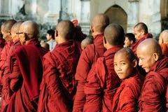 unga buddistiska monks Royaltyfri Bild