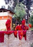 Unga buddistiska munkar Arkivfoto