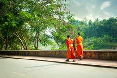 Unga buddistiska munkar på stadsgatan laos luangprabang Royaltyfri Foto