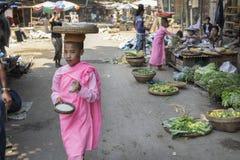 Unga buddistiska nunnor som samlar morgonallmosa Royaltyfria Bilder