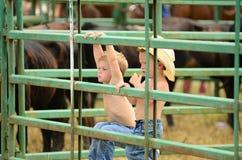 Unga cowboyer Royaltyfri Bild