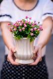 Unga flickan den hållande vasen med den nya våren blommar Arkivbild