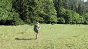 Unga flickan går i berget med bakpack - den Georgia nationalparken lager videofilmer