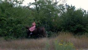 Unga flickan i en skyddande hjälm och en rosa klänning rider en brun häst på bakgrunden av träd och lövverk 4K video 4K lager videofilmer