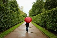 Unga flickan promenerar de gröna gränderna från buskarna i regnet med det röda paraplyet Arkivbilder