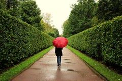 Unga flickan promenerar de gröna gränderna från buskarna i regnet med det röda paraplyet Royaltyfri Bild