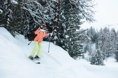 Unga flickan skidar i skogen arkivfoto