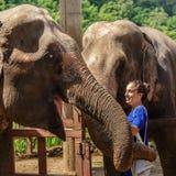 Unga flickan tar omsorg av elefanter på en fristad i djungeln av Chiang Mai royaltyfria foton