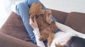 Unga flickan vilar med en hund på fåtöljen hemma lager videofilmer
