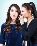 Unga flickor som skvallrar någon hemlighet Royaltyfria Bilder