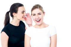 Unga flickor som skvallrar och har gyckel Arkivfoton