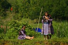 Unga flickor under förälskelsemarknadsfestival i Vietnam Royaltyfri Bild