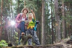 Unga fotvandra par med översikten som diskuterar över riktning i skog Arkivfoto