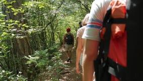 Unga fotvandrarevänner som går på en bana i Forest Rear Back View av Trekking tonåringar på Trek med ryggsäckar HD lager videofilmer