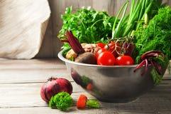Unga grönsaker Royaltyfri Fotografi