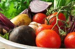 Unga grönsaker Fotografering för Bildbyråer