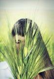 Unga gulliga kvinnainnehavöron av vete i händerna Arkivfoton