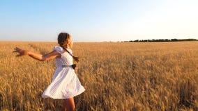 Unga härliga flickadanser i den vita klänningen i ett fält av moget vete Lyckligt barn som spelar i f?ltet stock video