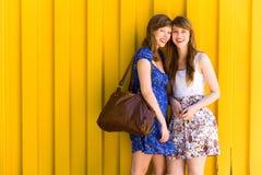 unga härliga kvinnor royaltyfri fotografi