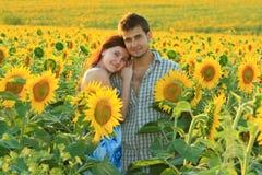 Unga härliga par i solrosfältet Royaltyfri Foto