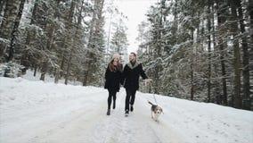 Unga härliga par som har gyckel med en hund i den vinterskogmannen och kvinnan som kör med beaglet i skog lager videofilmer