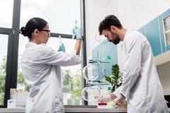 Unga kemister i vita lag som arbetar med flaskor och provrör i kemisk labb Arkivfoto