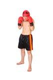 Unga Kickboxer Fotografering för Bildbyråer