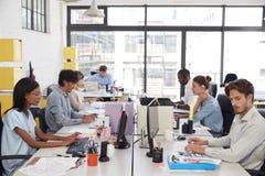 Unga kollegor som arbetar i ett upptaget, öppnar plankontoret Arkivbilder
