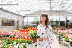 Unga kvinnaköpandeblommor på en trädgård centrerar Kvinna som ser blommor i en shoppa Stående av en le kvinna med arkivbilder