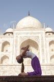 Unga kvinnliga praktiserande Ustrasana eller kamlet poserar på Taj Mahal Arkivbilder