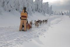 Unga kvinnor-musher på den långa trailen av Sedivaceks Arkivfoto