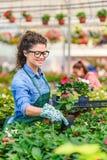 Unga kvinnor som arbetar i härlig färgrik blommaträdgård Arkivfoton
