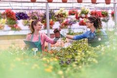Unga kvinnor som arbetar i härlig trädgårds- mitt Arkivbilder