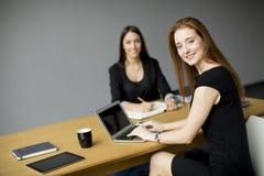 Unga kvinnor som arbetar i kontoret Royaltyfri Fotografi
